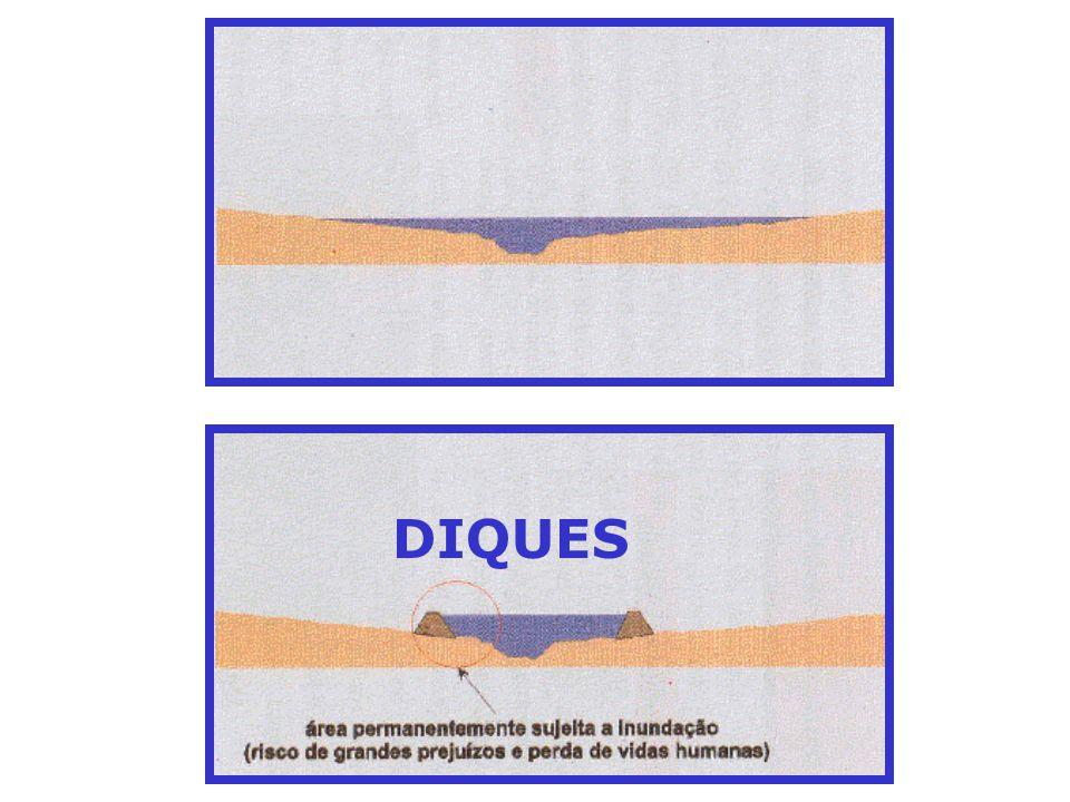 DIQUES