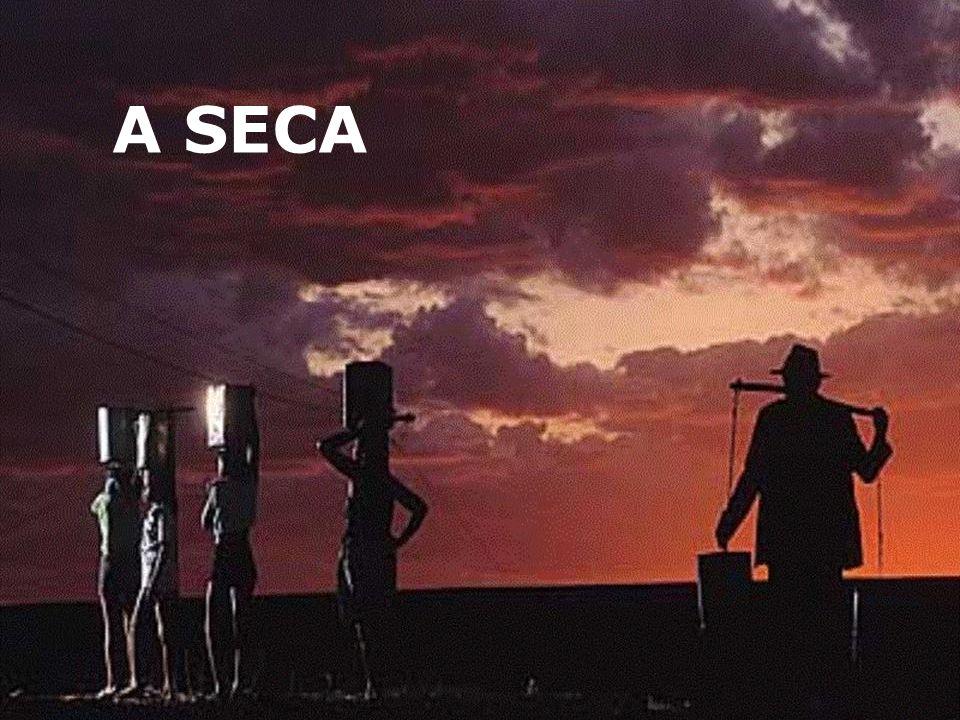 A SECA