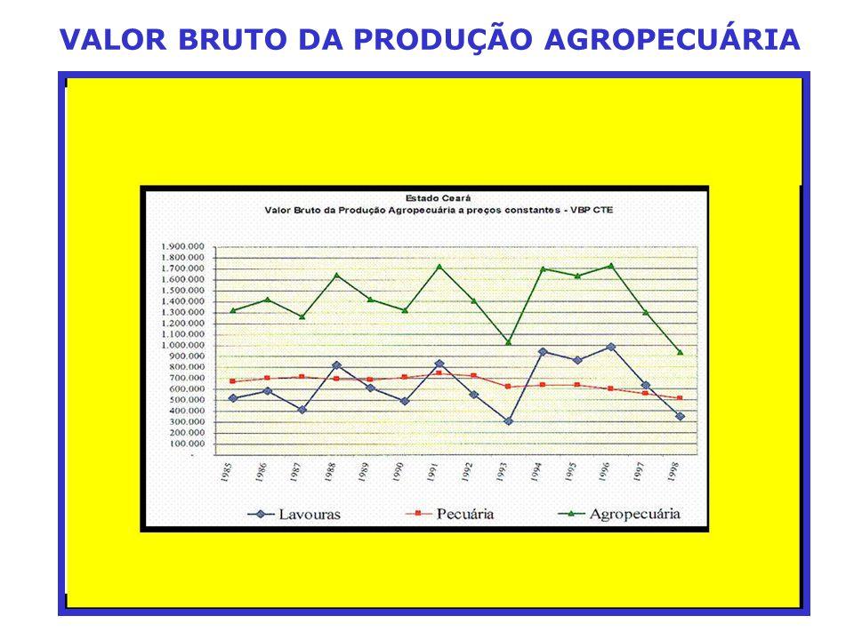 VALOR BRUTO DA PRODUÇÃO AGROPECUÁRIA