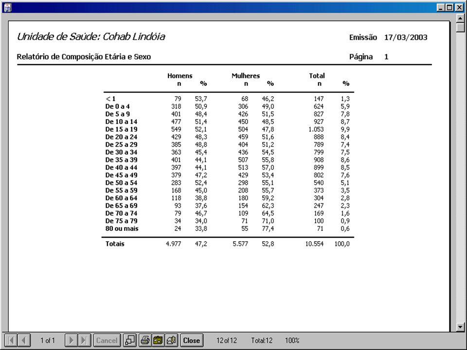 A simples digitação dos dados demográficos dos setores censitários das UBS permite a geração automática de relatórios com os resultados.