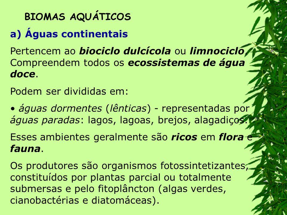 BIOMAS AQUÁTICOS a) Águas continentais. Pertencem ao biociclo dulcícola ou limnociclo. Compreendem todos os ecossistemas de água doce.