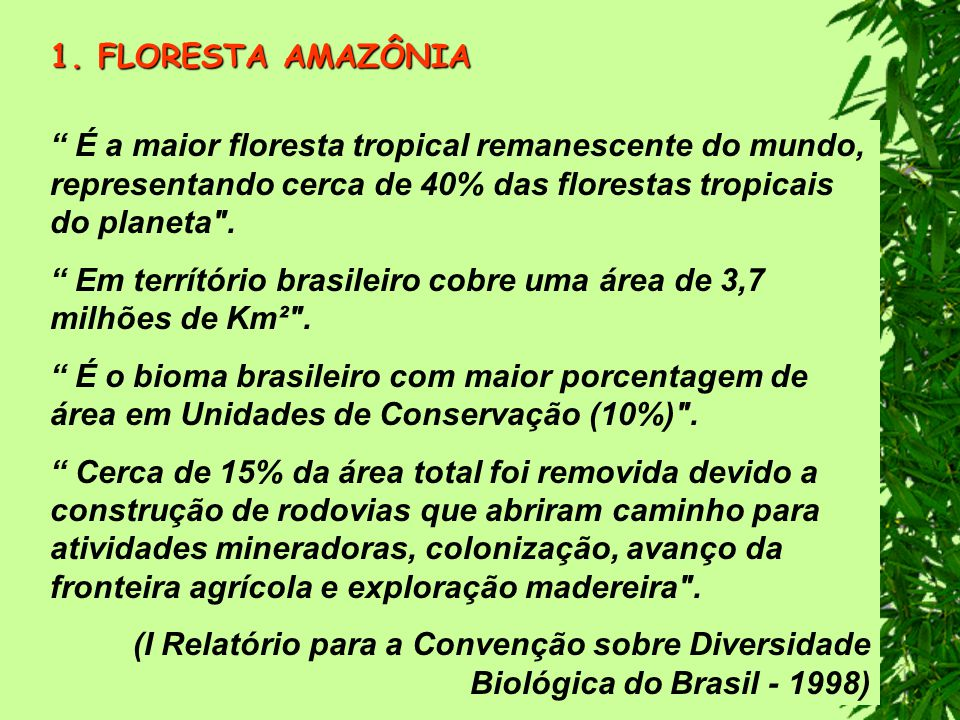 FLORESTA AMAZÔNIA É a maior floresta tropical remanescente do mundo, representando cerca de 40% das florestas tropicais do planeta .