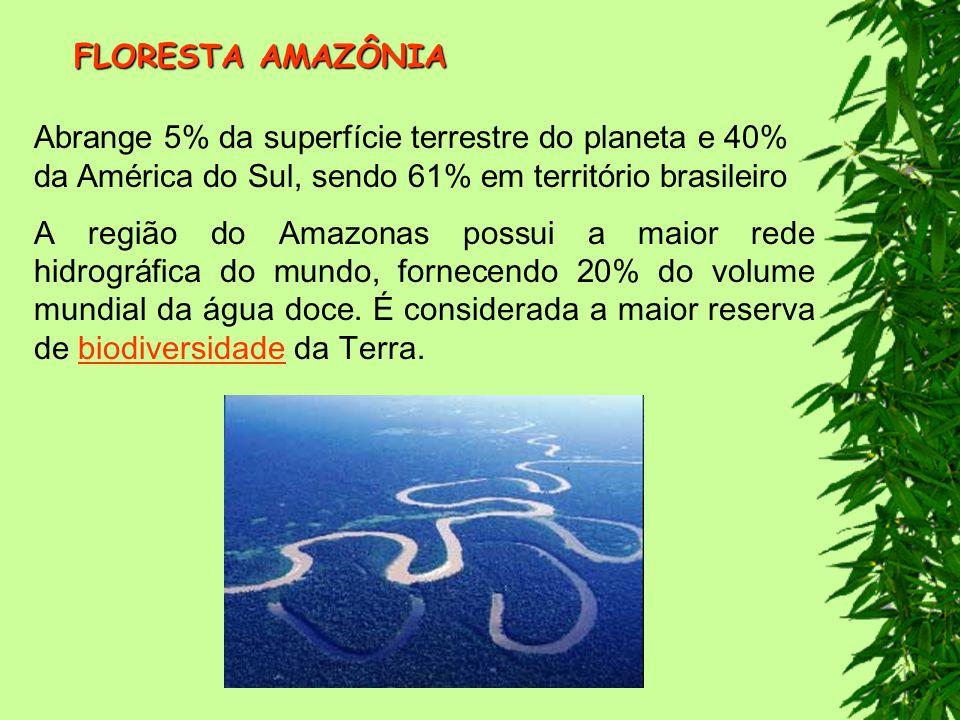 FLORESTA AMAZÔNIA Abrange 5% da superfície terrestre do planeta e 40% da América do Sul, sendo 61% em território brasileiro.
