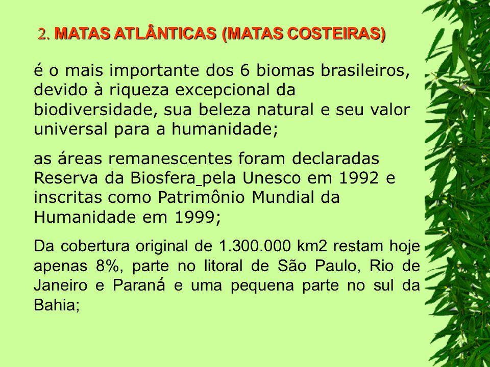 2. MATAS ATLÂNTICAS (MATAS COSTEIRAS)