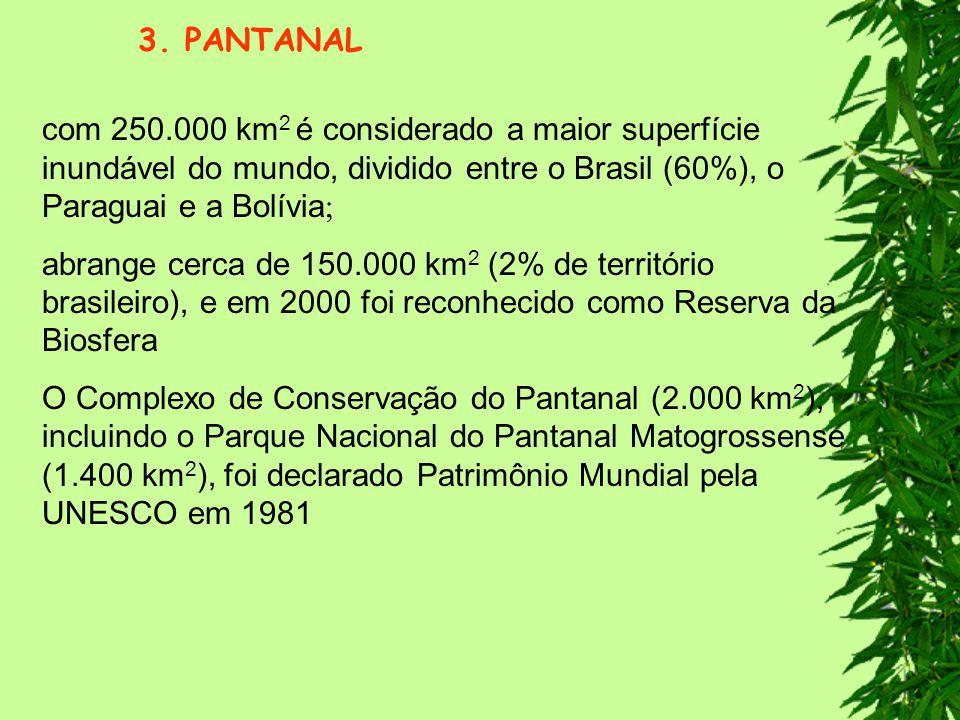 3. PANTANAL com 250.000 km2 é considerado a maior superfície inundável do mundo, dividido entre o Brasil (60%), o Paraguai e a Bolívia;