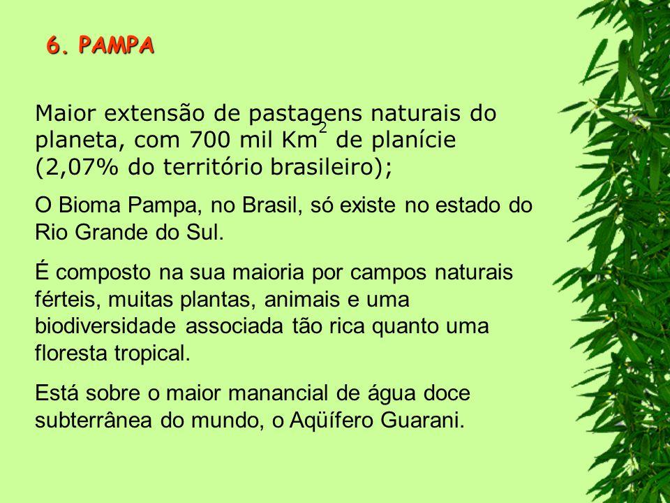 6. PAMPA Maior extensão de pastagens naturais do planeta, com 700 mil Km2 de planície (2,07% do território brasileiro);