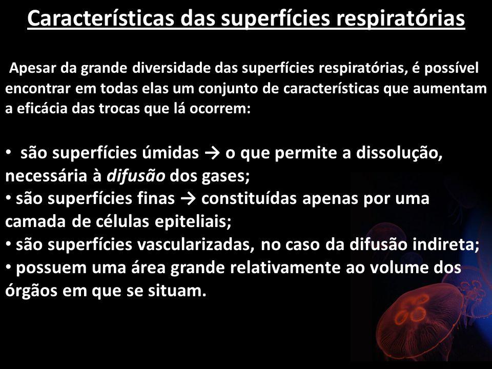 Características das superfícies respiratórias