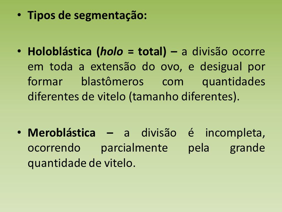 Tipos de segmentação: