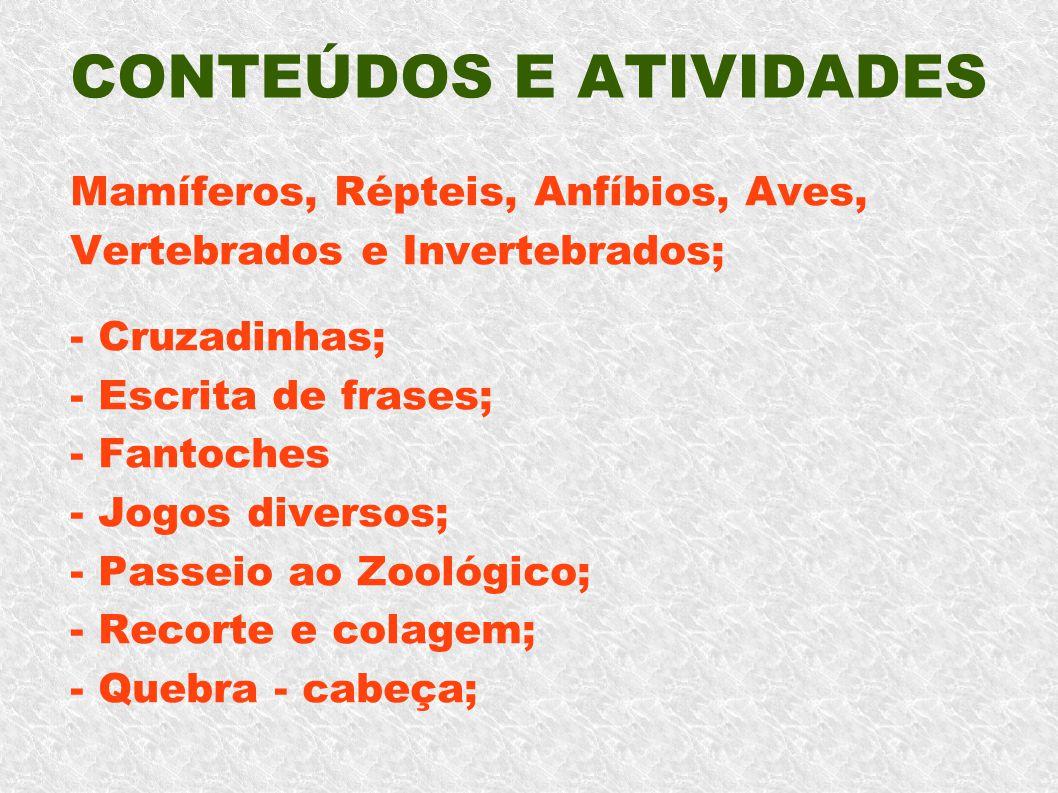 CONTEÚDOS E ATIVIDADES