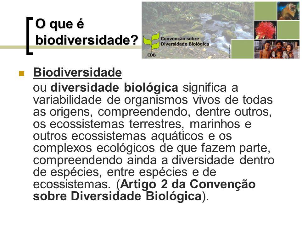 O que é biodiversidade Biodiversidade