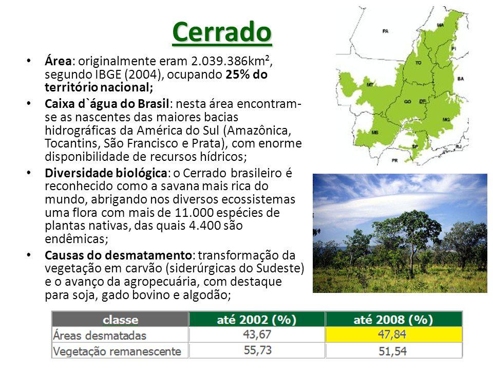 Cerrado Área: originalmente eram 2.039.386km², segundo IBGE (2004), ocupando 25% do território nacional;