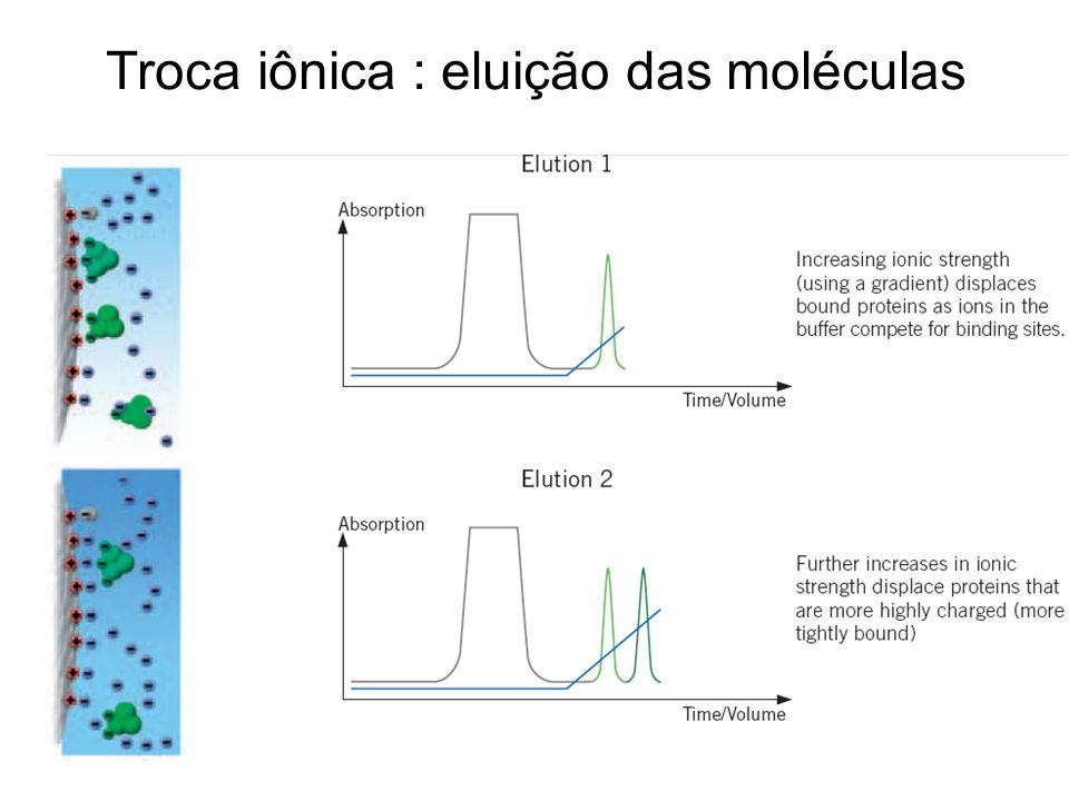 Troca iônica : eluição das moléculas
