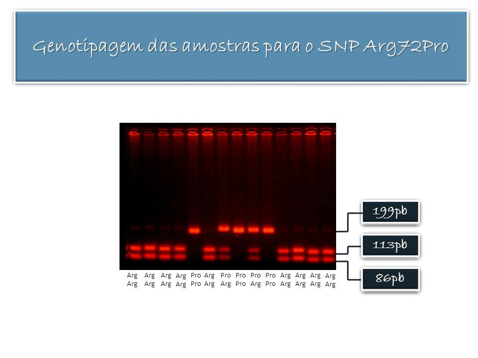 Genotipagem das amostras para o SNP Arg72Pro