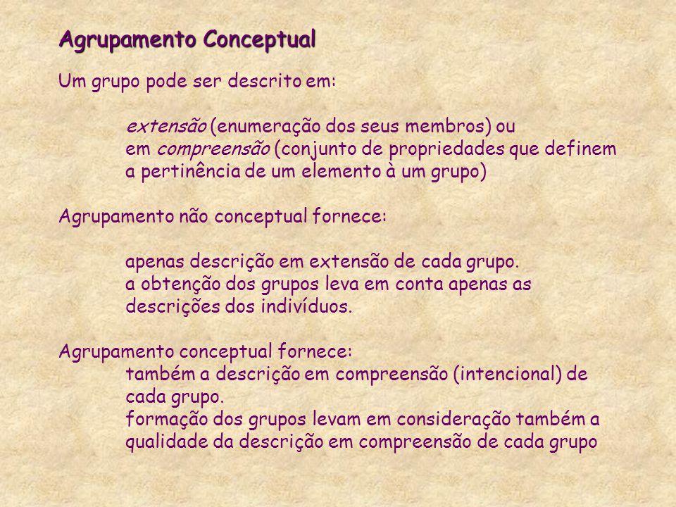 Agrupamento Conceptual Um grupo pode ser descrito em: