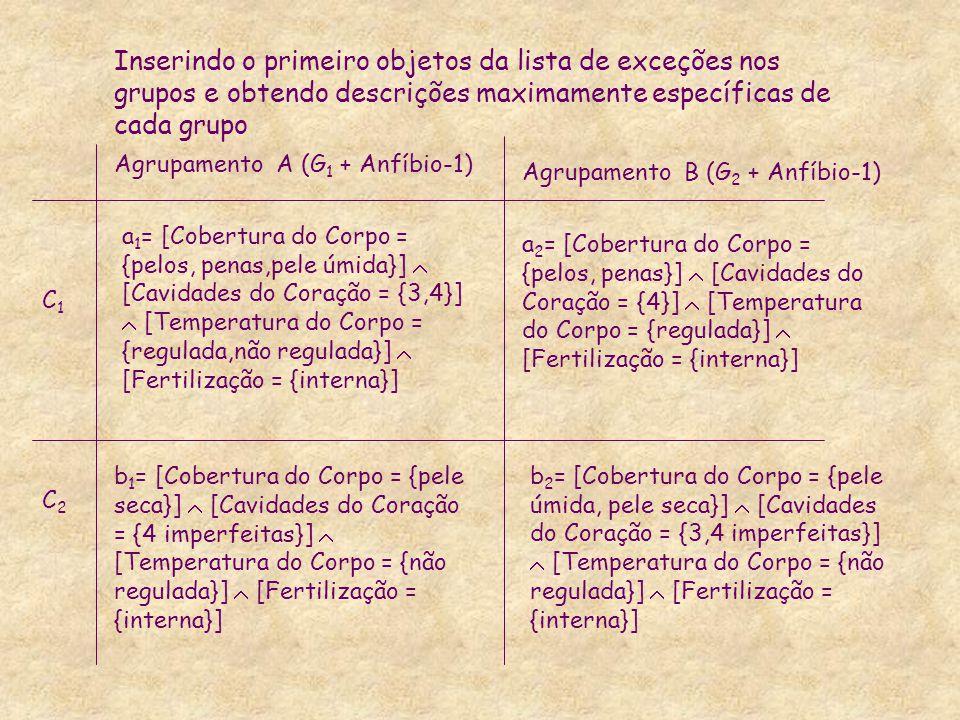 Inserindo o primeiro objetos da lista de exceções nos grupos e obtendo descrições maximamente específicas de cada grupo