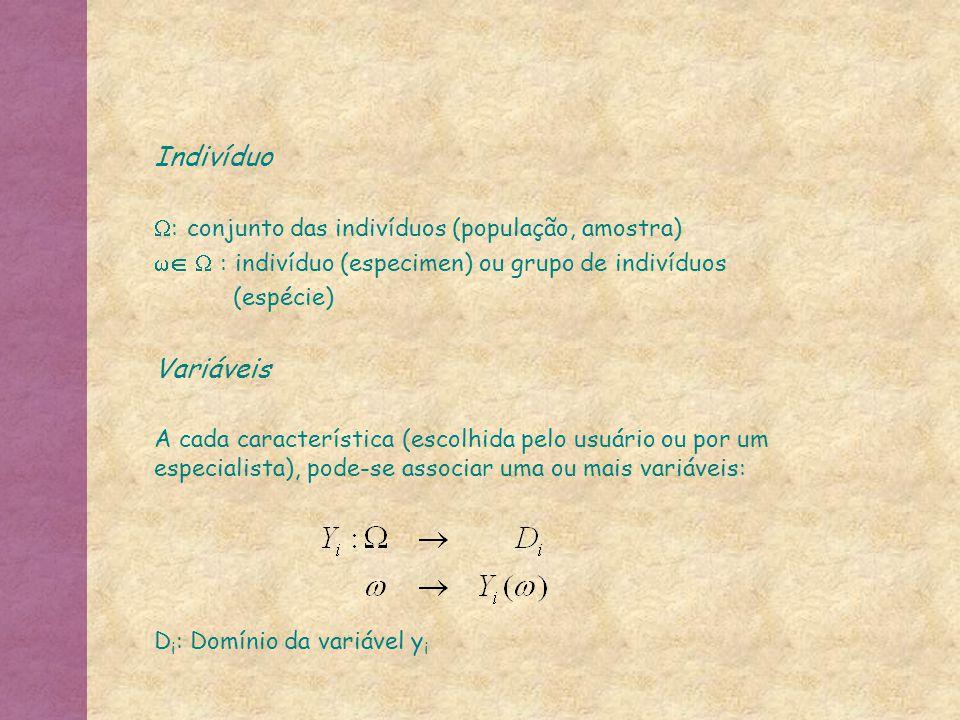 Indivíduo Variáveis : conjunto das indivíduos (população, amostra)