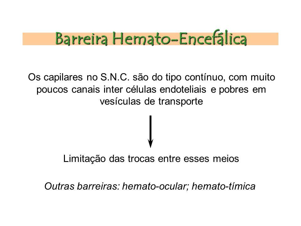 Barreira Hemato-Encefálica