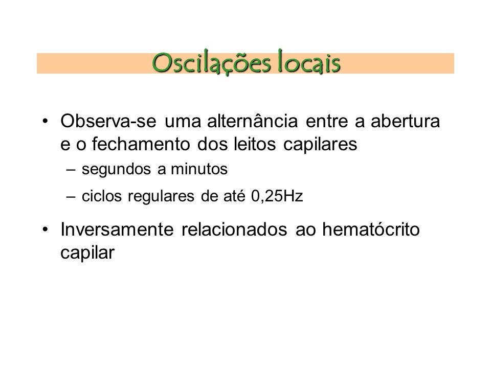 Oscilações locais Observa-se uma alternância entre a abertura e o fechamento dos leitos capilares. segundos a minutos.