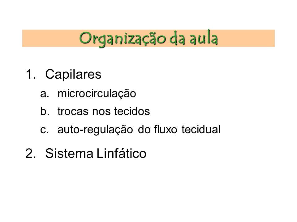 Organização da aula Capilares Sistema Linfático microcirculação