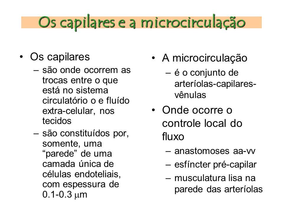 Os capilares e a microcirculação