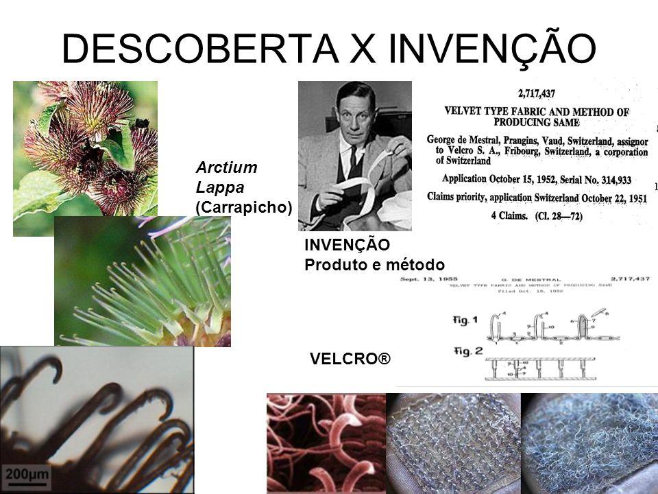 DESCOBERTA X INVENÇÃO Arctium Lappa (Carrapicho) INVENÇÃO