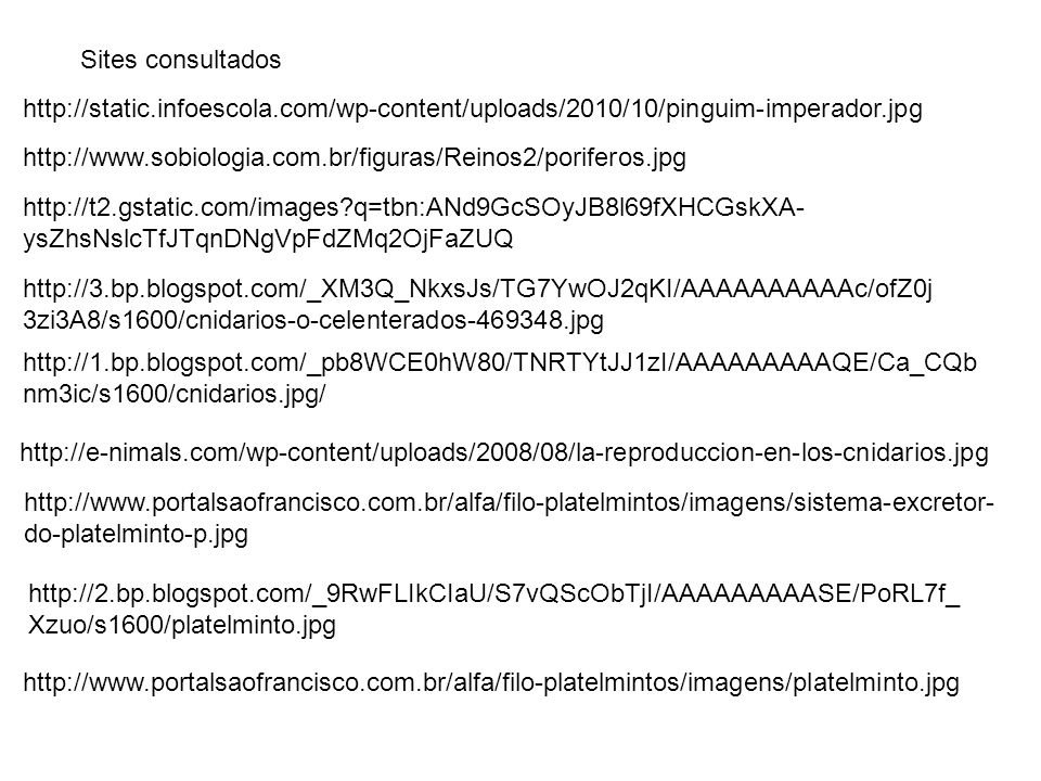 Sites consultados http://static.infoescola.com/wp-content/uploads/2010/10/pinguim-imperador.jpg.