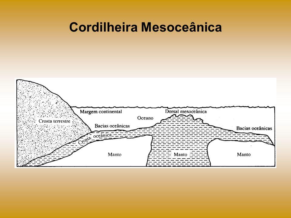 Cordilheira Mesoceânica