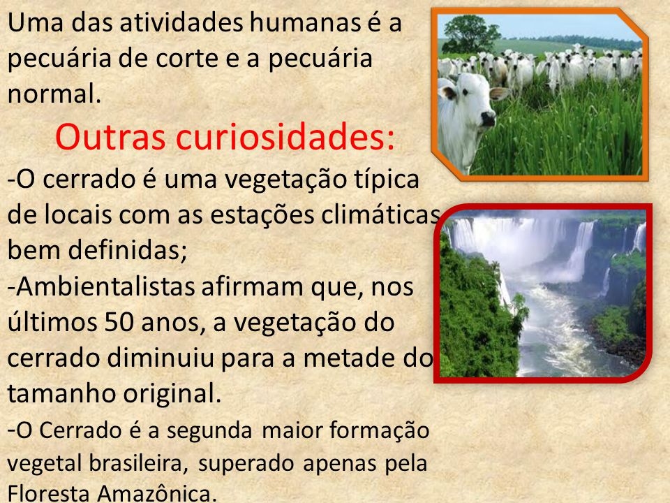 Uma das atividades humanas é a pecuária de corte e a pecuária normal.