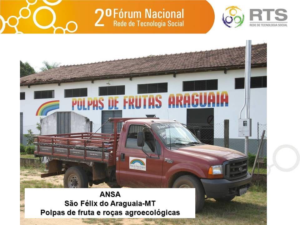 ANSA São Félix do Araguaia-MT Polpas de fruta e roças agroecológicas