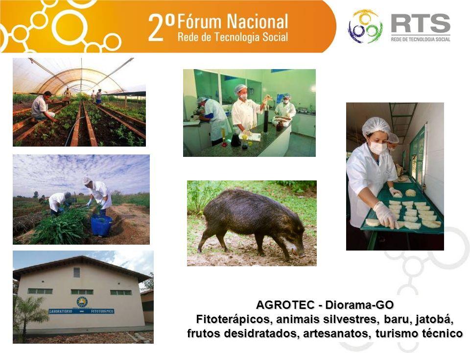 AGROTEC - Diorama-GO Fitoterápicos, animais silvestres, baru, jatobá, frutos desidratados, artesanatos, turismo técnico.