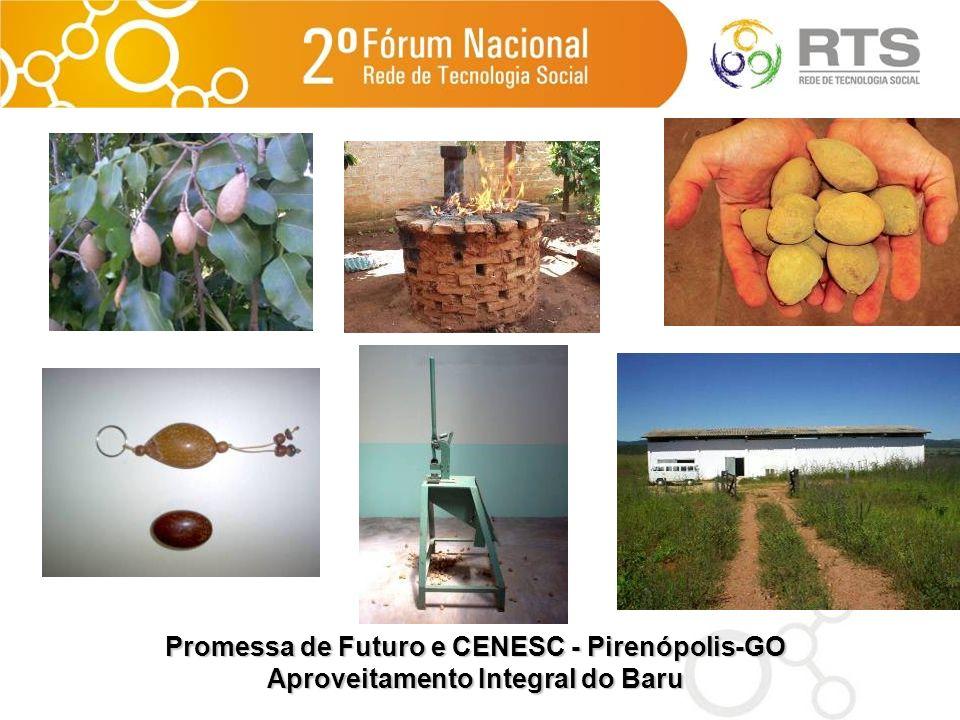 Promessa de Futuro e CENESC - Pirenópolis-GO