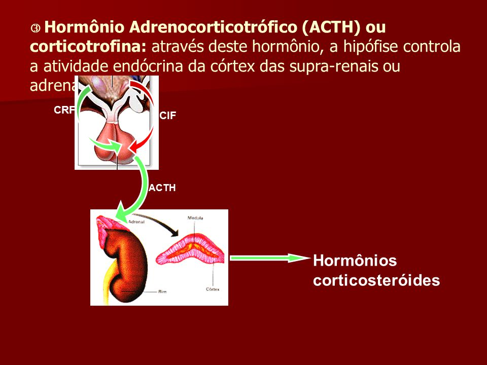 Hormônios corticosteróides
