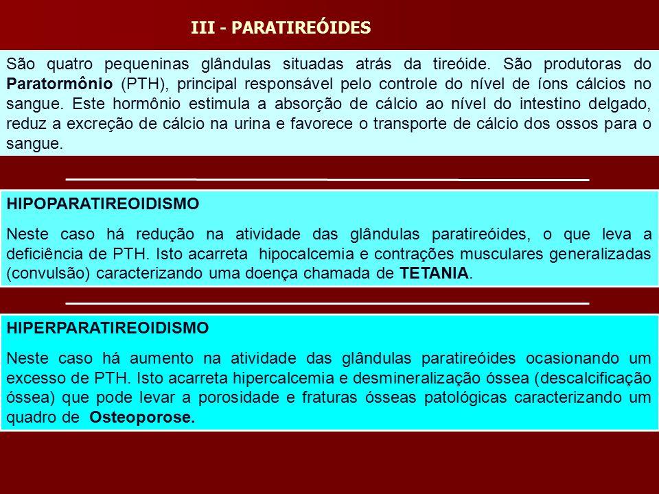 III - PARATIREÓIDES