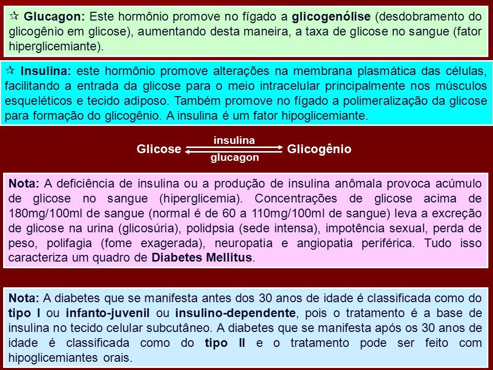  Glucagon: Este hormônio promove no fígado a glicogenólise (desdobramento do glicogênio em glicose), aumentando desta maneira, a taxa de glicose no sangue (fator hiperglicemiante).