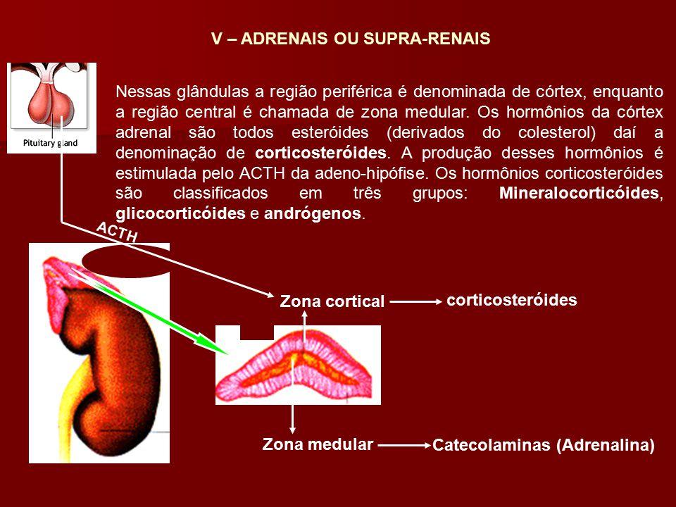 Catecolaminas (Adrenalina)