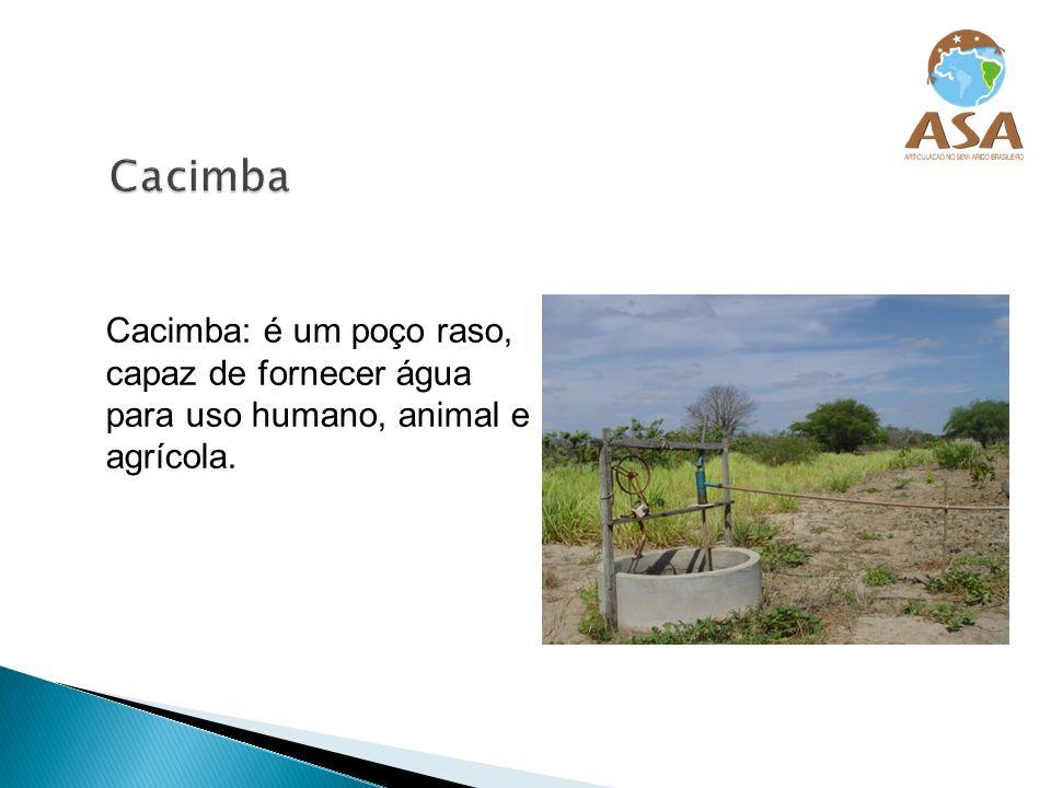 Cacimba Cacimba: é um poço raso, capaz de fornecer água para uso humano, animal e agrícola.