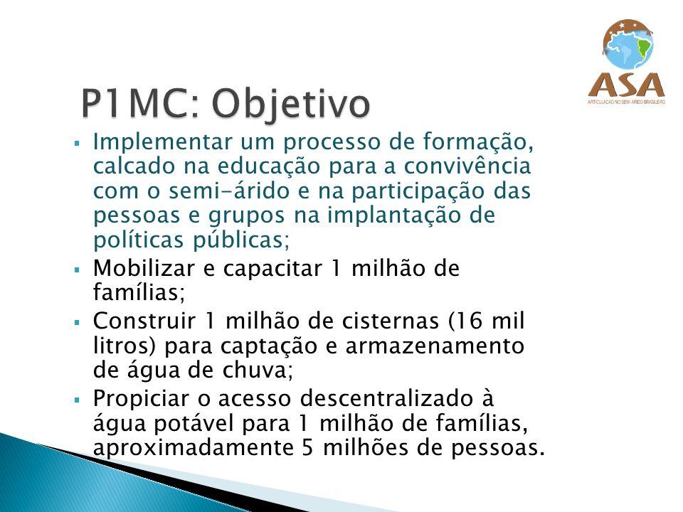 P1MC: Objetivo