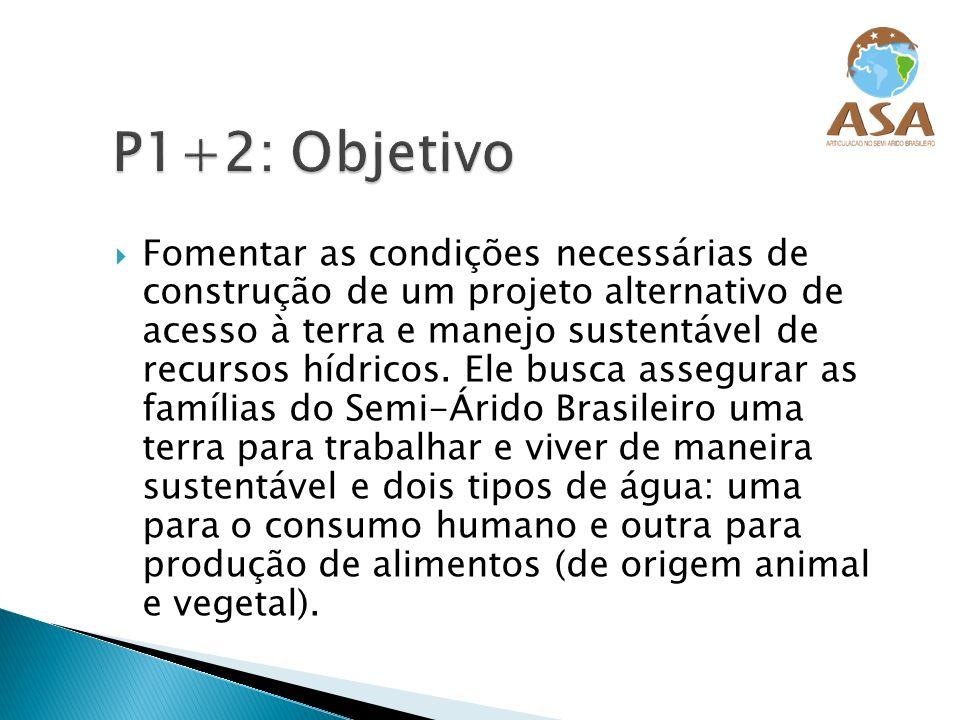 P1+2: Objetivo