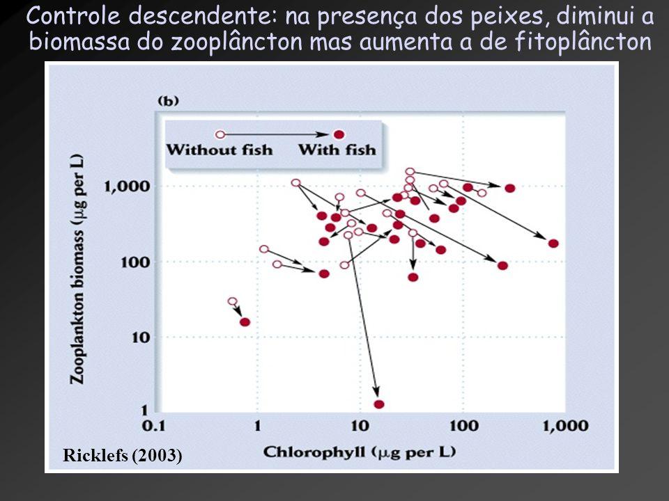 Controle descendente: na presença dos peixes, diminui a biomassa do zooplâncton mas aumenta a de fitoplâncton