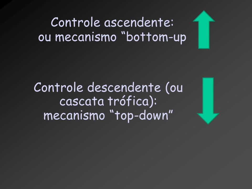 ou mecanismo bottom-up