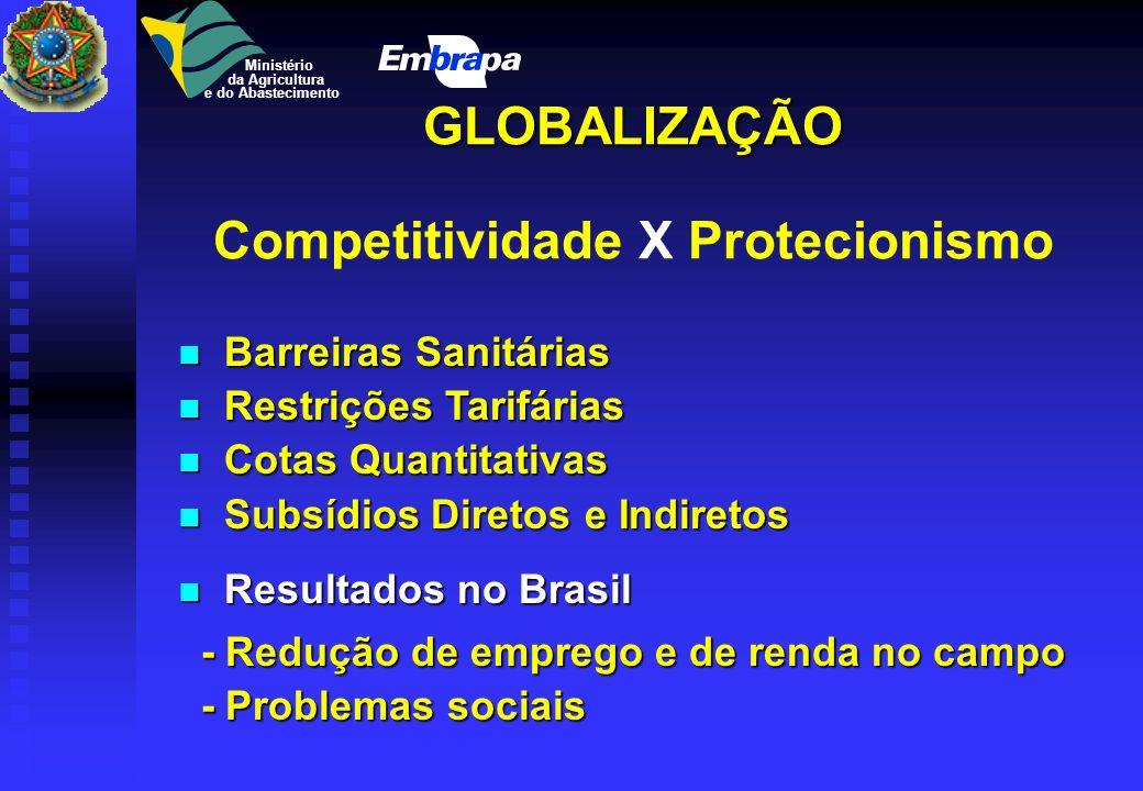 GLOBALIZAÇÃO Competitividade X Protecionismo