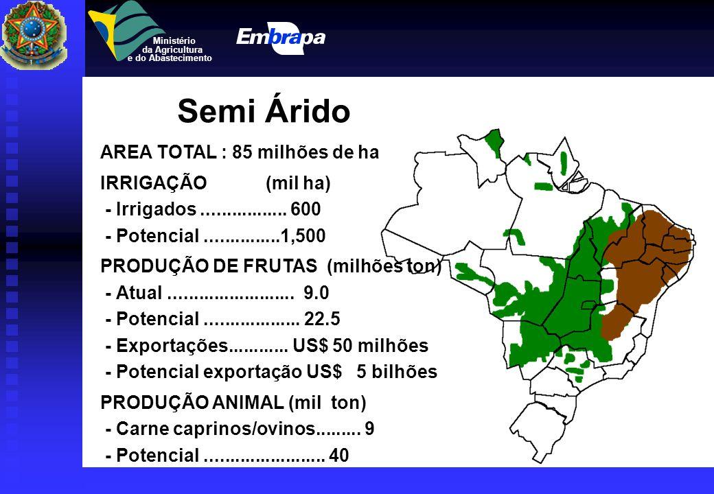 Semi Árido AREA TOTAL : 85 milhões de ha IRRIGAÇÃO (mil ha)