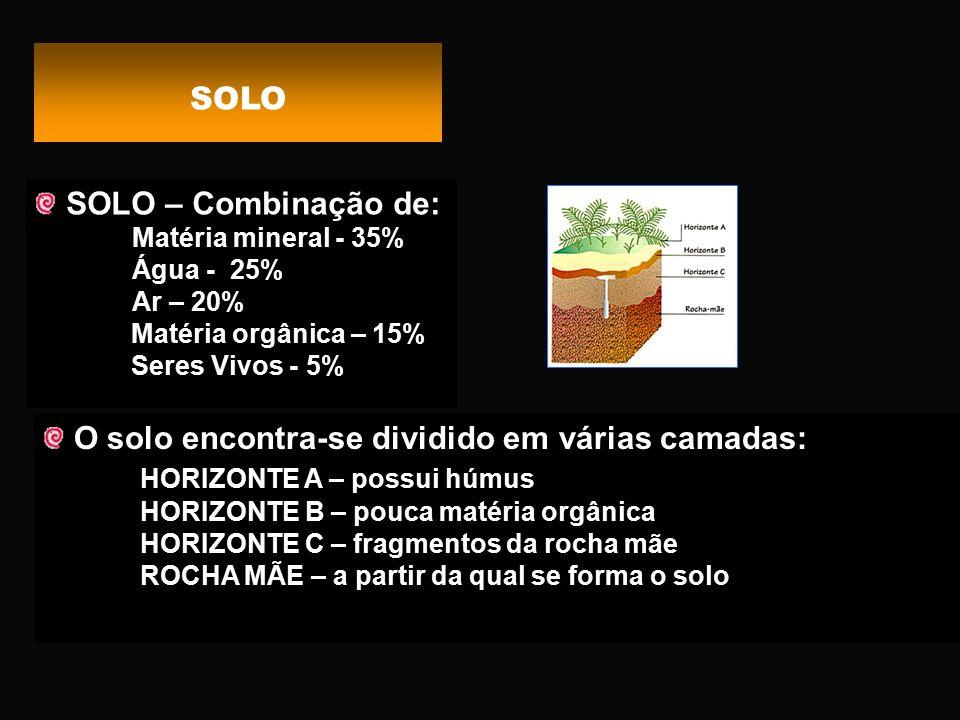 O solo encontra-se dividido em várias camadas: