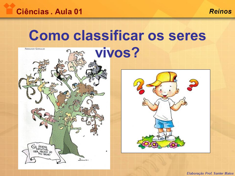 Como classificar os seres vivos