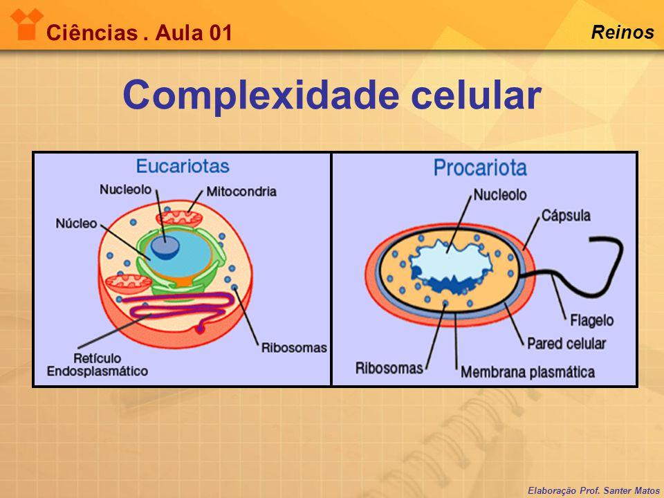 Complexidade celular Ciências . Aula 01 Reinos