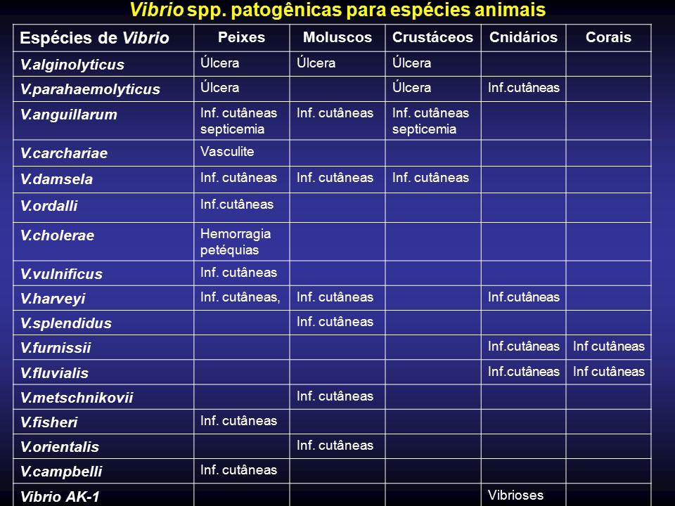 Vibrio spp. patogênicas para espécies animais