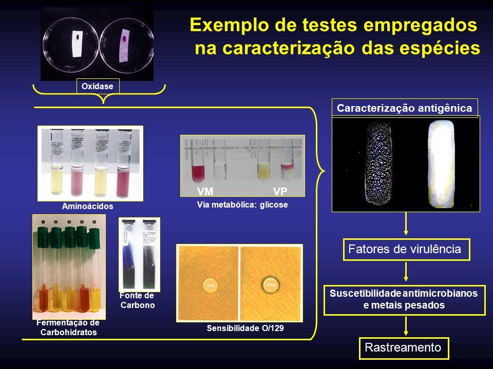 Suscetibilidade antimicrobianos
