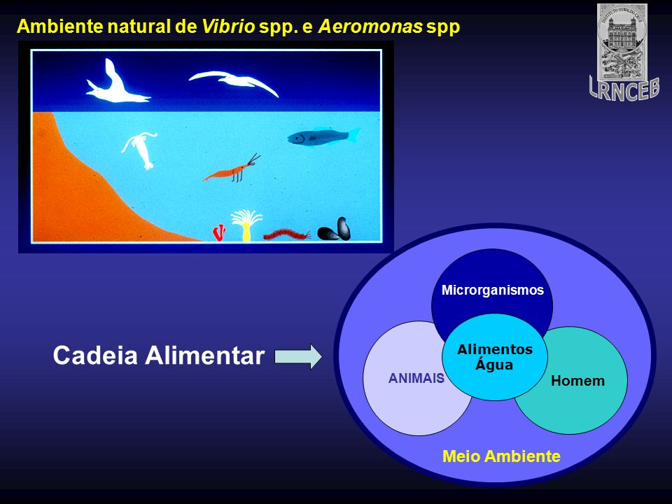 Ambiente natural de Vibrio spp. e Aeromonas spp