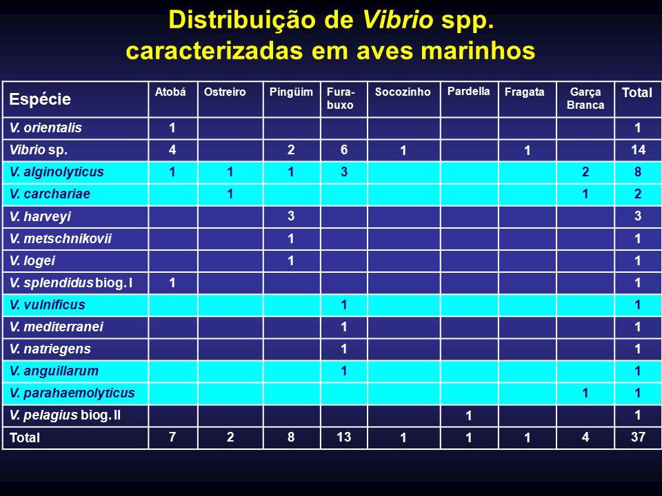 Distribuição de Vibrio spp. caracterizadas em aves marinhos