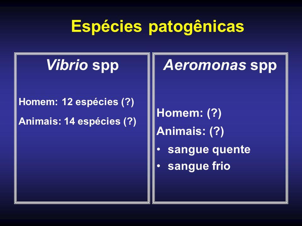 Espécies patogênicas Vibrio spp Aeromonas spp Homem: ( ) Animais: ( )